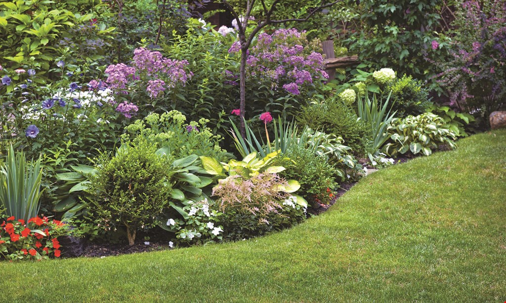 Product image for BC Landscaping $250 off any complete landscape or hardscape install