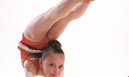 Product image for Lafleur's Gymnastic Academy Center 2 for 1 daytime open gym