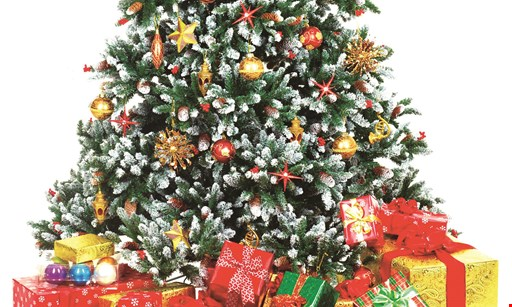 Product image for Treetime Christmas Creations - Artificial Christmas Trees $5 off any purchase of $25 or more. 10% off new tree purchases $100+.