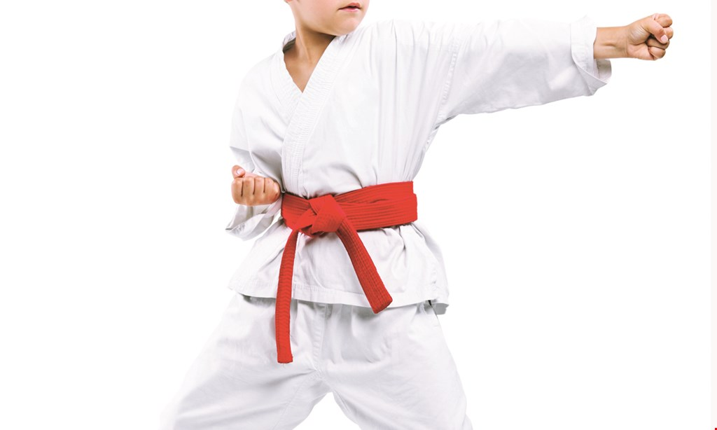 Product image for MKA Karate HOLIDAY GIFT SPECIAL ONLY $49 2 Weeks of Karate Classes Plus Uniform & Belt.