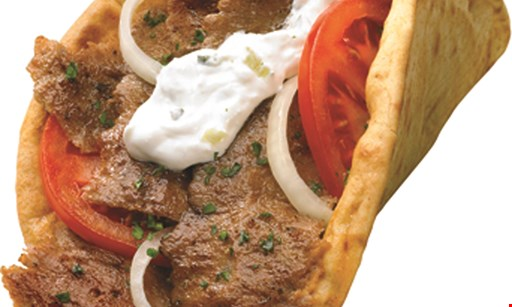 Product image for Mr. Gyros $26.99 2 gyros, 2 hot dogs, 2 1/4lb. hamburgers, 2 chicken breasts on pita, 2 family-size orders of fries, 1/2lb. homemade onion rings plus 4 cans of soda free