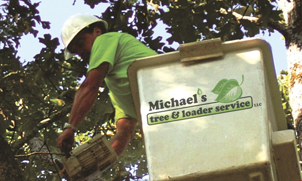 Product image for Michael's Tree and Loader Service LLC 10% OFF any tree service.