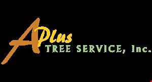 A Plus Tree Service, Inc logo