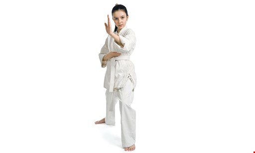 Product image for KARATE PLUS FAMILY CENTER $69.99 6 weeks of reg. karate lessons.