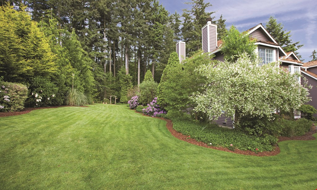 Product image for Tomlinson Bomberger 50% off your first visit with the purchase of a full lawn program!*