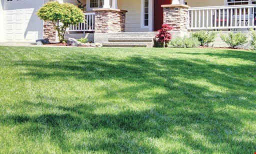 Product image for Lang's Lawncare $50 OFF Initial Rodent Treatment.