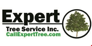 Expert Tree Service Inc. logo
