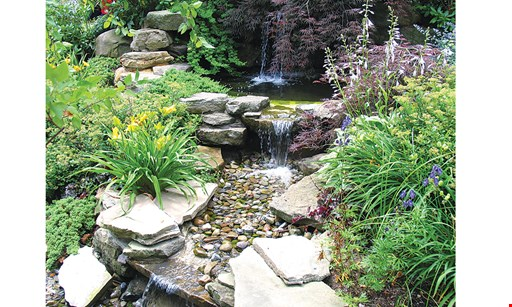Product image for The Landscape Company & Nursery $20 off any purchase of $100 or more.