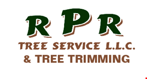 Product image for RPR Tree Service LLC & Tree Trimming $100 off any service of $1000 or more.