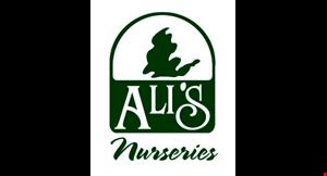 Ali's Nurseries logo