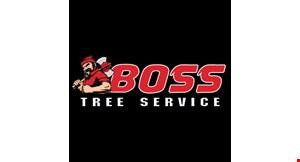 Boss Tree Services, LLC logo