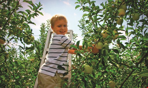 Product image for Riverview Orchards $5 Off PYO