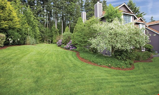 Product image for Magnolia Lawn Your First Treatment