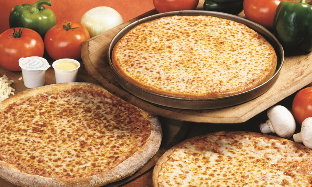 "Product image for ROSATI'S PIZZA One 14"" 2-topping pizza Free."