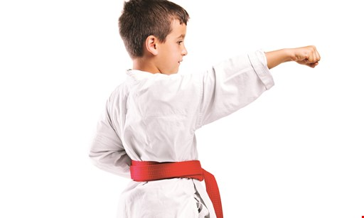 Product image for PAI'S TAE KWON DO ACADEMY Winter Special for only $19.95