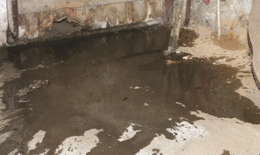 Product image for BASEMENT WATERPROOFING SPECIALISTS FREE* BASEMENT CONSULTATION while still available