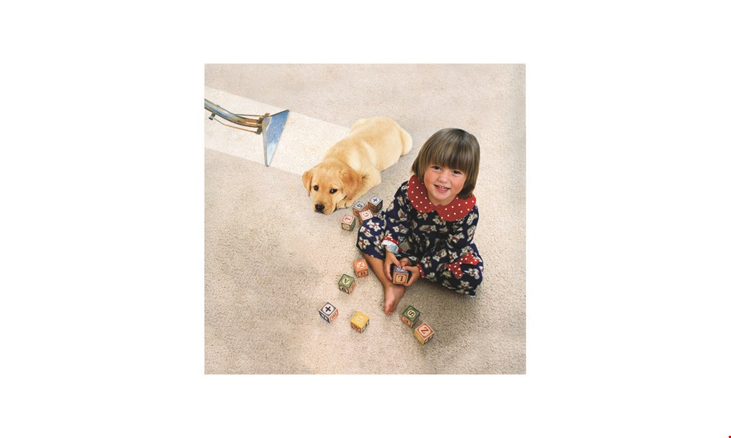 Product image for Zbest Carpet Cleaning $39.99 per room living room, dining room, bedrooms minimum 3 rooms.