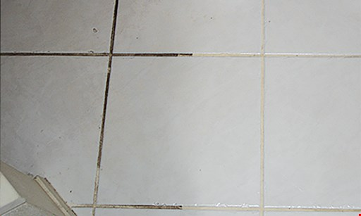 Product image for Xtraordinary Carpet Care $169.95 ENTIRE HOME CLEANED