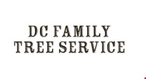 DC Family Tree Service logo