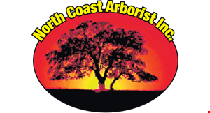 North Coast Arborist logo