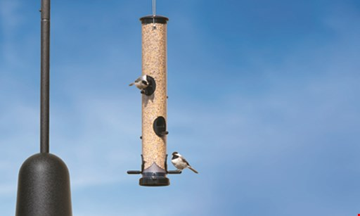 Product image for Wild Birds Unlimited Trade in an Old Feeder; Get 15% Off a New One*
