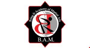 Bring - It Academy of  Martial Arts logo