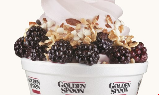 Product image for Golden Spoon free topping!
