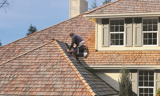 Product image for Busy Bee Construction & Chimney Specialist 10% off any job for senior citizens!