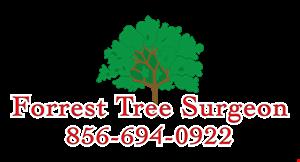 Forrest Tree Surgeons logo