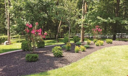 Product image for Zimmerman Landscaping Free interactive landscape design (A $750 value FREE!).