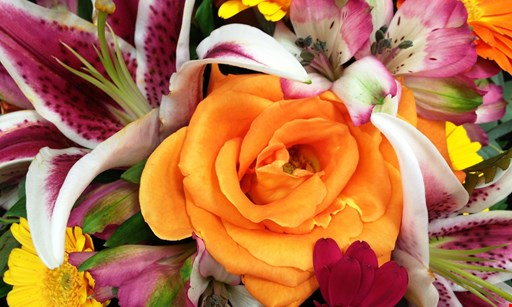 Product image for Expressions Floral Design Studio 10% OFF pre-ordered arrangements pickup only, no delivery