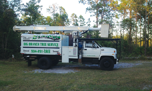 Product image for Big Branch Tree Service 20% Off any job of $500 or more