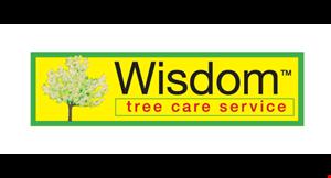 Wisdom Tree Care Service logo