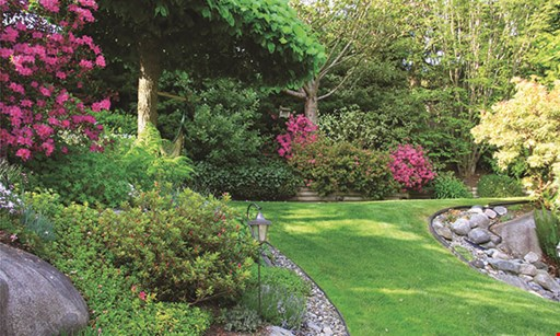 Product image for 20/20 Landscaping & Tree Service $100 off any service of $1000 or more