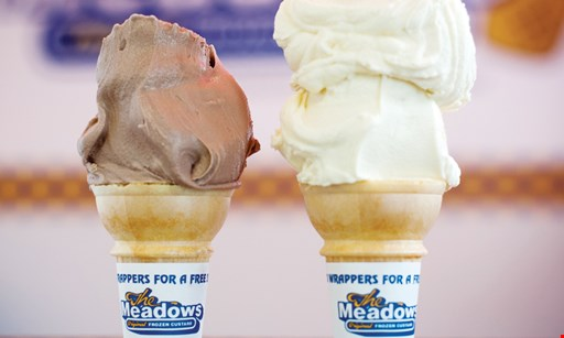 Product image for Meadows Original Frozen Custard Free small cone