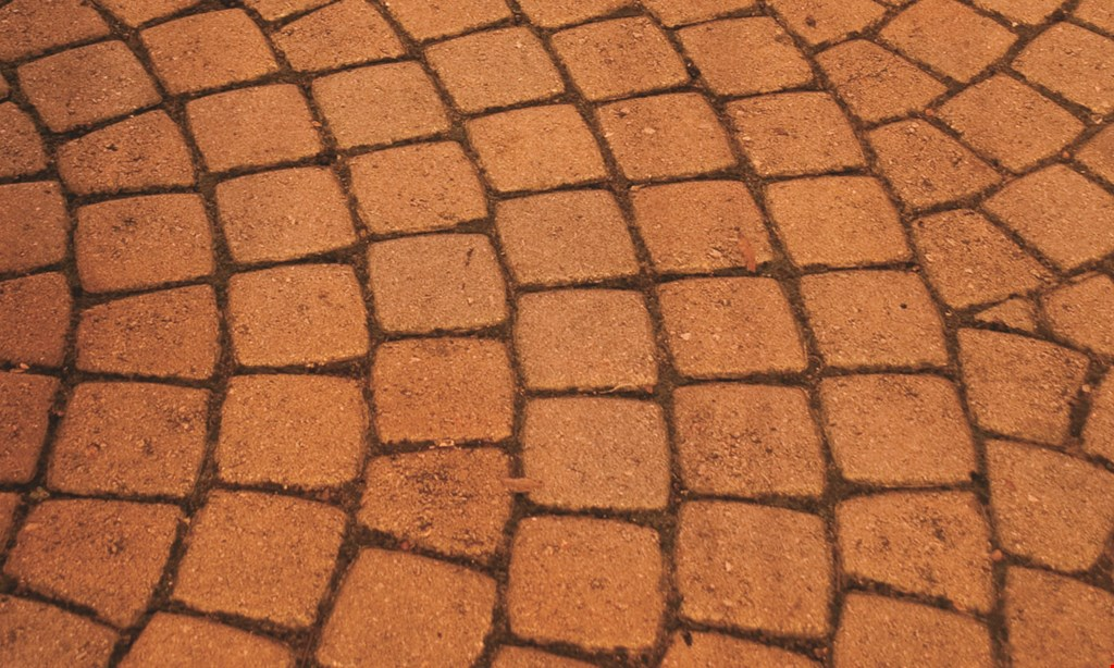 Product image for Paver Renew $100 OFF orders exceeding $800.