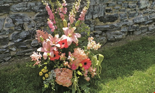 Product image for Garden Bouquet 50% off any one in-store item