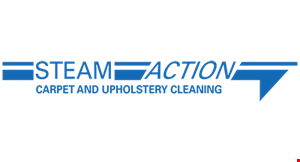 Steam Action Carpet Cleaning logo
