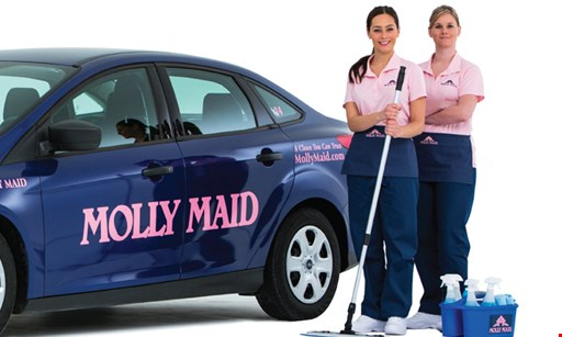 Product image for Molly Maid $99 Window Cleaning Special