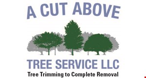 Product image for A Cut Above Tree Service $150 OFF any job of $1,000 or more.
