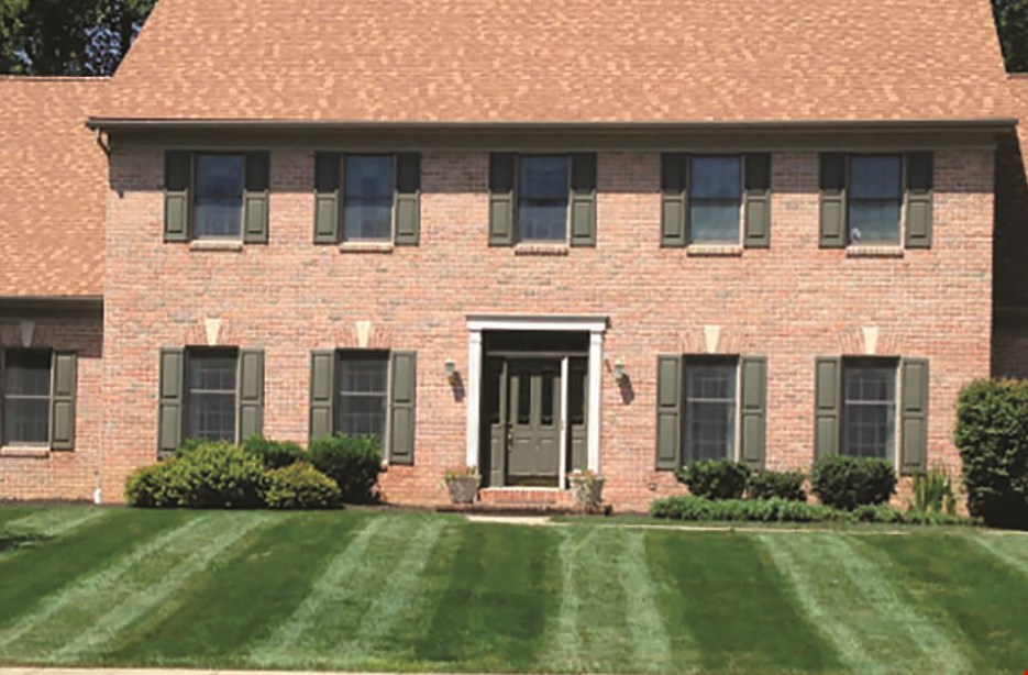 Product image for Mike's Professional Lawn Care LLC $75 OFF any spring clean-up project of $750 or more.