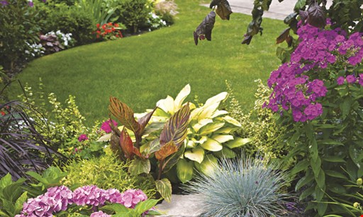 Product image for RF Landscape Construction LLC $75 OFF any job over $500.