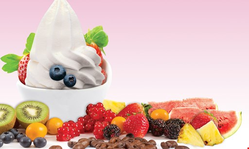 Product image for Sweet Frog buy one froyo, get the second 50% Off