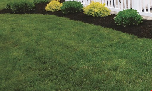 Product image for Monroe Grounds Maintenance $50 OFF fall clean-up of $350 or more