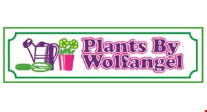 Product image for Plants By Wolfangel $10 Off Any Tree Or Shrub Purchase Of $60 Or More.