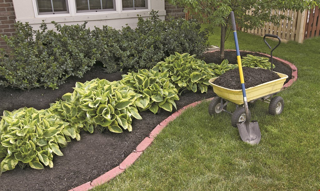 Product image for Garcia Landscaping $200 off any job totaling $3,000 or more.