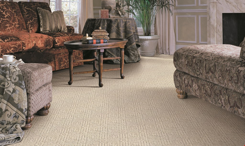 Product image for Stanley Steemer 50% off AREA RUG. GET ONE AREA RUG CLEANED AT REGULAR PRICE, GET A 2ND AREA RUG CLEANED FOR 50% OFF.