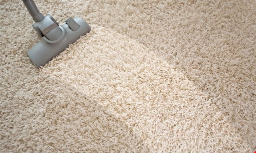 Product image for The Professional Robert Hurley Carpet Cleaning $150 Six Areas