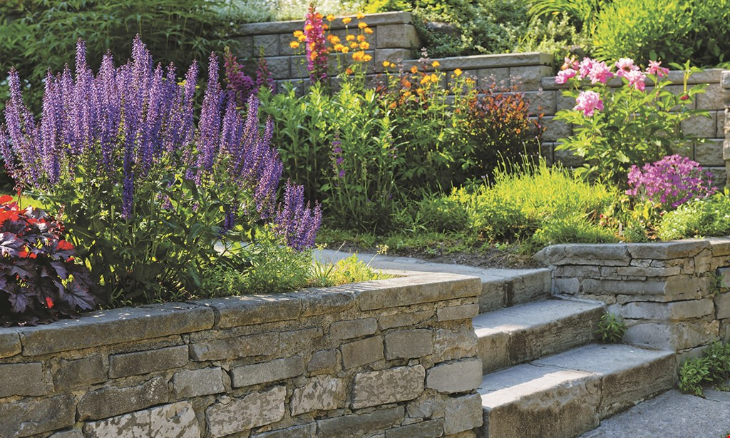 Product image for Dean's Landscaping 10% Off Your Next Outdoor Project.