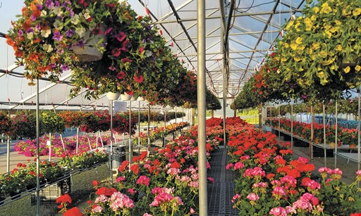 Product image for Farmer Browns Marketplace $5 off any garden center purchase